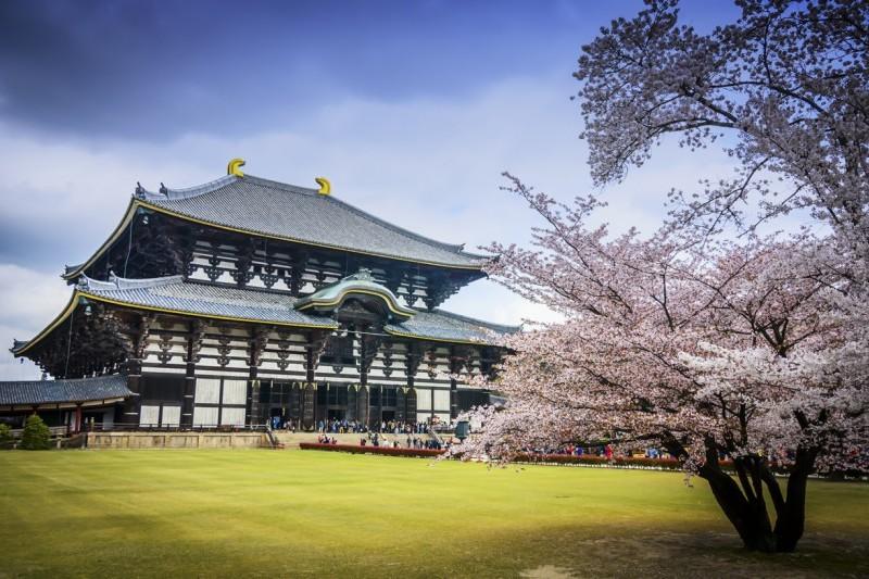 Fushimi Inari & Nara